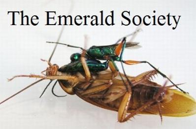 Emerald Society Pic